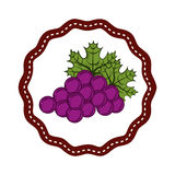 Fresh grapes fruits icon Stock Images