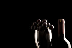 Fresh Grapes on Glass and Wine Stock Photography