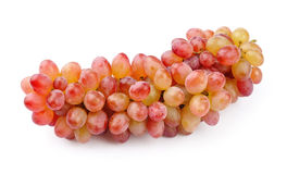 Fresh grapes. Royalty Free Stock Photography