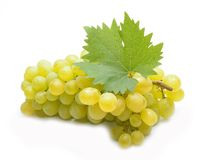 Fresh  grapes with leaves Stock Photography