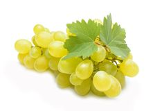 Fresh  grapes with leaves Stock Photo
