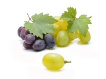 Fresh grapes with leaves Stock Image