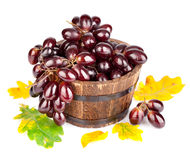 Fresh grapes in plate with green leaves Royalty Free Stock Image