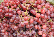 Fresh grapes. Selling at market Stock Photo