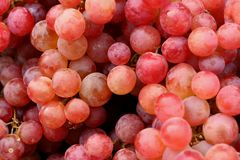 Fresh grapes on the table at the market Royalty Free Stock Photos