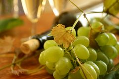 Fresh grapes, vine and vine bottle Stock Image