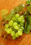 Fresh grapes and vine on wooden Stock Image