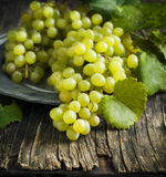Fresh grapes in vintage plate Royalty Free Stock Images