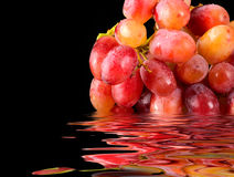 Fresh Grapes In Water Royalty Free Stock Image