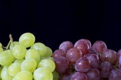 Fresh grapes Royalty Free Stock Image