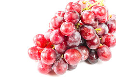 Fresh grapes  on white background Stock Photography