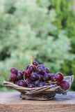 Fresh grapes in wicker basket Stock Images