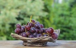 Fresh grapes in wicker basket stock photo