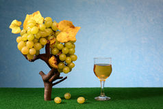 Fresh grapes and wine in the glass Royalty Free Stock Image