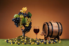 Fresh grapes and wooden barrel for wine Royalty Free Stock Photo