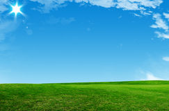 Fresh grass and a blue sunny sky  Stock Image