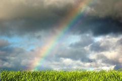 Fresh grass and sky with rainbow stock photography