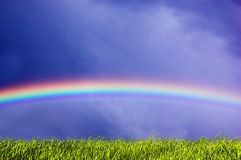 Fresh grass and sky with rainbow. Fresh green grass on sky with beautiful rainbow. Version 2 Royalty Free Stock Photography