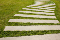 Fresh grass way Stock Photography