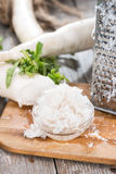 Fresh grated Horseradish Royalty Free Stock Images
