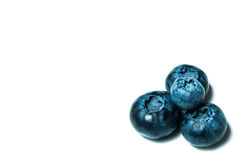 Fresh great bilberries or blueberries isolated on white background Stock Photos