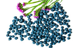 Fresh great bilberries or blueberries isolated on Stock Photography