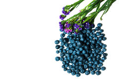 Fresh great bilberries or blueberries isolated on white background Stock Images