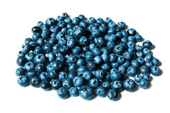 Fresh great bilberries or blueberries isolated on white background Royalty Free Stock Photos