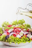 Fresh greek salad. Royalty Free Stock Photo