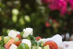 Fresh Greek salad on red flowers. Background stock photo