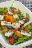 Fresh greek salad Stock Images