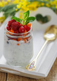 Fresh Greek yogurt with Chia seeds and fresh berries Royalty Free Stock Images