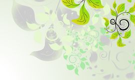 Fresh green abstract background Royalty Free Stock Images