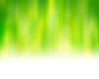 Fresh green abstract background Stock Image