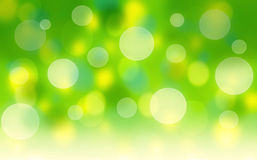 Fresh green abstract background. Fresh green abstract spring background with bokeh effect Royalty Free Stock Photo