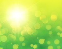 Fresh green abstract background Royalty Free Stock Photography