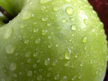 Fresh green apple Stock Image