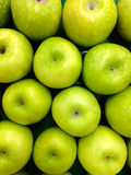 Fresh green apple Stock Photos