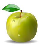 Fresh green apple with green leaf Stock Photography