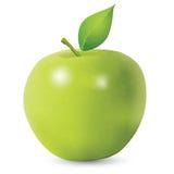 Fresh Green Apple Stock Images