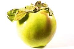 Fresh green apple Stock Photography