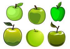 Fresh green apples fruits set Stock Image