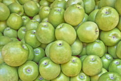 Fresh green apples for sale Stock Images