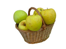 Fresh green apples in wicker basket isolated Royalty Free Stock Photo