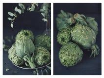 Fresh green artichokes. Stock Image