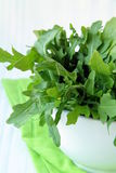 Fresh green Arugula salad Royalty Free Stock Image