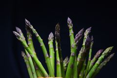 Asparagus on the dark background. Fresh green asparagus on the dark background, lighted sort, close up stock photo