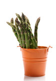 Fresh green Asparagus in enamelled orange bucket Royalty Free Stock Image