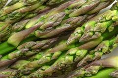 Fresh green asparagus macro raw. Selective focus.  Stock Photos