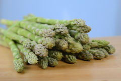 Fresh green asparagus sprouts Stock Photography